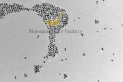 nanosfere